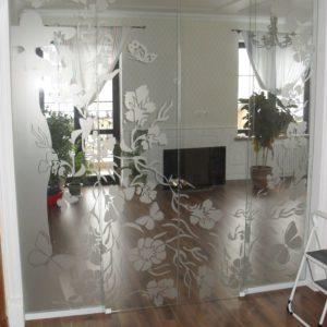 Двери стеклянные 1